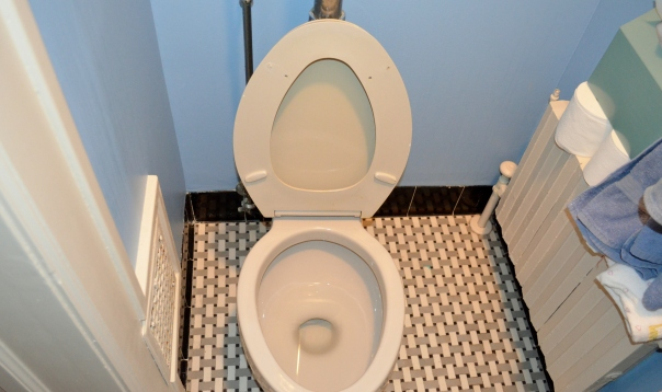 Be every alert for toilet seats up