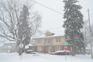 I'm not sure which is older, the house or the trees, ut they've both seen their fair share of winters. Let's return winter storms to the quiet dignity of tall pine trees and old brick houses and stop trying to make them famous, shall we?