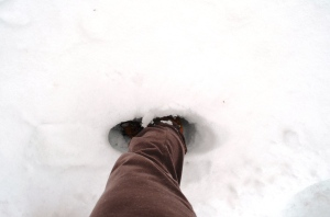 April knee deep in the snow