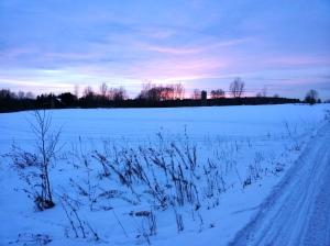 Sunset on an open field