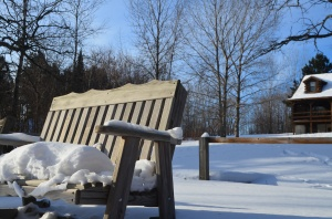 Sunset on snowy bench