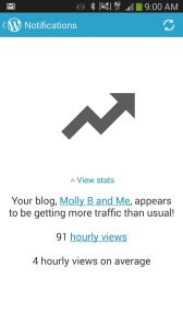 This message showed up on my cellphone on a busy posting morning. I know 94 hourly views doesn't seem like a lot to, say, the Pioneer Woman, but it does seem like a lot compared to 4 views an hour. Again, it made us laugh.
