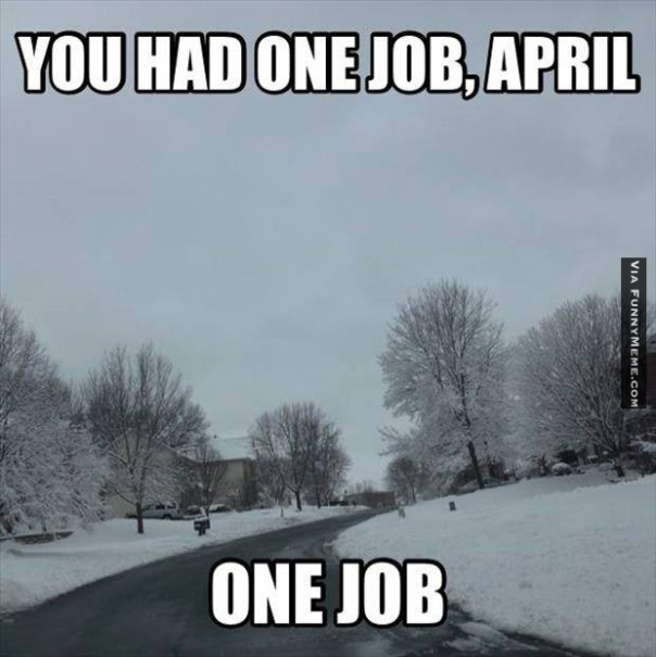 Funny-memes-you-had-one-job-april