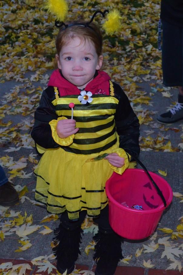 cute-bumble-bee
