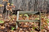 An Aldo Leopold bench. The story is that he invented the six-board design for these benches and set them up on his property. He liked to take coffee, a notebook and sketchpad out in the early dawn to sit quietly and observe. That does not sound like a bad way to spend a morning to me.